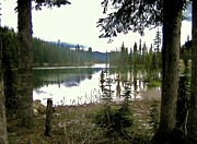Photogrphy Prints - Forest with Lake in British Columbia Print by Reb Frost