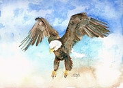 Bald Eagle Painting Framed Prints - Forever Free Framed Print by Arline Wagner