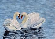 Forever Swans Print by Sharon Farber