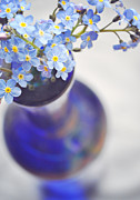 Pretty Flowers Prints - Forget me nots in deep blue vase Print by Lyn Randle