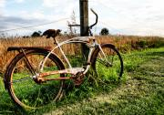 Fence Post Photos - Forgotten Bicycle by Doug Hockman Photography