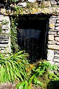 Forgotten Doorway Print by Peter Jenkins