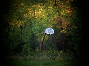 Basketball Art - Forgotten Hoop by Michael L Kimble