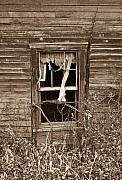 Ghostly Prints - Forlorn Window Print by Douglas Barnett