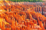 Jay Mudaliar - Formations at Bryce...