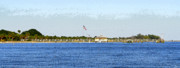 Panoramic Digital Art - Fort Desoto South Pier by David Lee Thompson