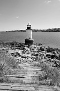 Catherine White Prints - Fort Pickering Light Print by Catherine Reusch  Daley