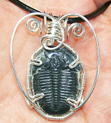 Grey Black Jewelry - Fossil Trilobite and Silver Pendant by Heather Jordan
