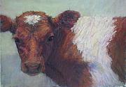 Bulls Pastels Framed Prints - Foundling Framed Print by Susan Williamson