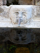 Provence Village Posters - Fountain Face Poster by Lainie Wrightson