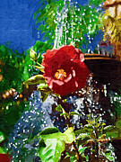 Devonne Prints - Fountain Flower Print by Karen Devonne Douglas