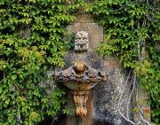 Architectural Details Photo Prints - Fountain In The Walled Garden, Florence Print by The Irish Image Collection