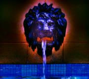 Cool Lion Prints - Fountain Print by Patricia Motley