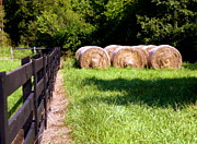 Tennessee Hay Bales Photo Framed Prints - Four Corners Framed Print by Karen Wiles