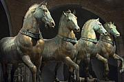 Marco Originals - Four Horses of San Marco by Jon Cretarolo