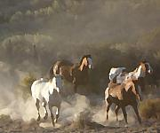 Animals Pyrography - Four Horses  by Rosalyn Kliot