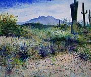 Enver Larney Art - Four Peaks Phoenix Arizona USA 2003  by Enver Larney