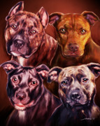 Bull Terrier Art - Four Pit Bulls by Michael Spano