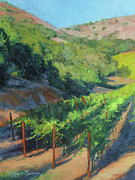 Chardonnay Wine Paintings - Four Rows Napa Valley by Anna Bain