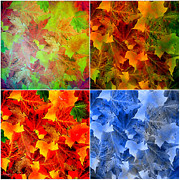 Four Seasons Framed Prints - Four Seasons in Abstract Framed Print by Lourry Legarde