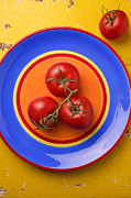 Plate Plates Prints - Four tomatoes  Print by Garry Gay