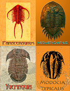 Creepy Digital Art - Four Trilobites by Melissa A Benson