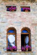 Drapery Photo Prints - Four Windows Print by Marilyn Hunt