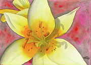Stamen Originals - Fourth of July Flower by Ken Powers