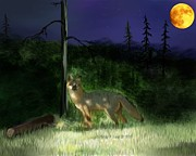 Fox Digital Art - Fox at night by Clara Christensen