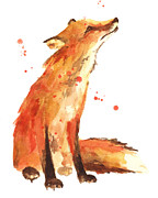 Watercolour Portrait Prints - Fox Painting - Print from Original Print by Alison Fennell