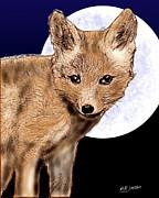 Barry Jones - Fox Pup