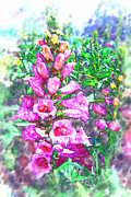 Foxglove Flowers Digital Art Prints - Foxglove Floral Print by Kathy Clark