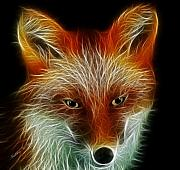 Animal Digital Art Digital Art Prints - Foxy Print by Madeline M Allen