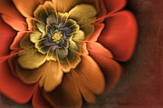 Stylish Digital Art - Fractal Pansy by John Edwards