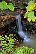 Ledge Photos - Framed Falls by Robert Harmon