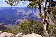 Framed View - Grand Canyon Print by Larry Ricker