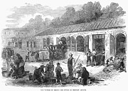 Medoc Metal Prints - France: Winemaking, 1871 Metal Print by Granger