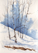 Aspen Tree Paintings - Francis Snow by Sam Sidders