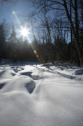 Snow-covered Landscape Prints - Franconia Brook - Lincoln New Hampshire  Print by Erin Paul Donovan