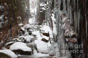 Tourists Attraction Prints - Franconia Notch State Park - Flume Gorge  Print by Erin Paul Donovan