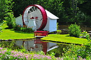 Catherine White Photo Prints - Franconia Notch Waterwheel Print by Catherine Reusch  Daley