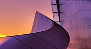Chuck Kuhn - Frank Gehry Curves III