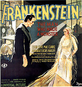 1930s Poster Art Photos - Frankenstein, Boris Karloff, Mae Clarke by Everett