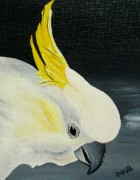 Parrot Paintings - Frankie - Sulphur Crested Cockatoo by Una  Miller