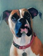 Boxer Painting Prints - Frankie Print by Bonnie Freireich