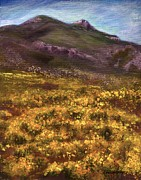 Donna Vesely - Franklin Mountains Gold