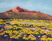 Southwest Landscape Pastels Metal Prints - Franklin Poppies Metal Print by Candy Mayer