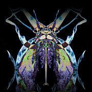 Psychedelic Photo Prints - Freaky Bug Plant Print by David Kleinsasser