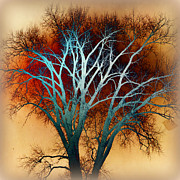 Freaky Tree 1 Print by Marty Koch