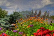 Flower Gardens Mixed Media Framed Prints - Frederik Meijer Gardens-4 Framed Print by Robert Pearson
